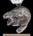 Silver_Beaver_Award