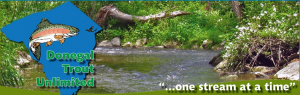 Dongal Trout Unlimited