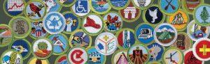 med_merit-badge-1_980x300
